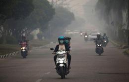 Thêm nhiều trường học ở Indonesia đóng cửa vì ô nhiễm khói bụi