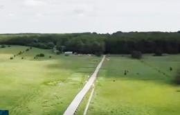 Cầu Viking dài nhất thế giới ở Đan Mạch