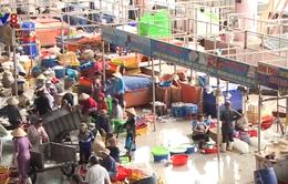 Đà Nẵng tăng cường quản lí chất thải thủy sản
