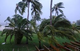 Mỹ ban bố lệnh di tản bắt buộc trước bão Dorian