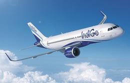 Mở đường bay thẳng từ Ấn Độ tới Hà Nội và TP.HCM