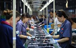 OECD dự báo tăng trưởng kinh tế toàn cầu giảm