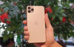 iPhone 11 ùn ùn đổ về Việt Nam