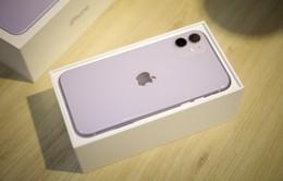 """Cận cảnh iPhone 11 màu tím """"mộng mơ"""""""