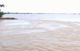 Báo động sạt lở bờ sông, bờ biển ở Đồng bằng sông Cửu Long