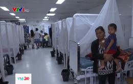 Bùng phát dịch sốt xuất huyết tại Honduras