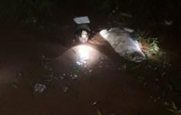 Bình Phước: Tìm thấy thi thể bé trai 10 tuổi bị nước cuốn trôi