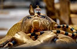 Chiêm ngưỡng quách nạm vàng của Pharaoh Ai Cập Tutankhamun