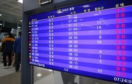 Bão Tapah ảnh hưởng tới Hàn Quốc, gần 250 chuyến bay bị hủy