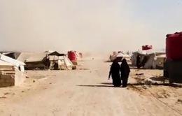 Trại Al Hol - Quả bom hẹn giờ của IS