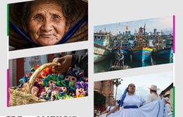 Khám phá triển lãm Mexico - Việt Nam: Nơi hội tụ những ánh mắt