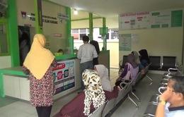 Hơn 900.000 người Indonesia bị bệnh về đường hô hấp do cháy rừng