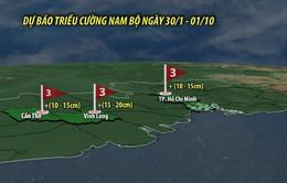 Nhiều tỉnh, thành Nam Bộ ngập lụt vì triều cường vào mùa cao điểm