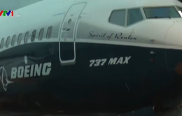 Mỹ: Nghi vấn thông tin sai về trình độ thanh tra hàng không