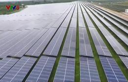 Khánh thành nhà máy điện mặt trời Cư Jút