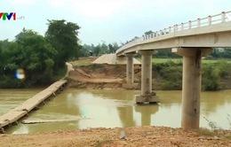 Sạt lở bờ sông diễn biến nghiêm trọng tại Hà Tĩnh