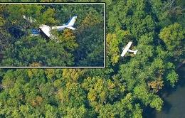 Máy bay đáp... trên cây ở Mỹ