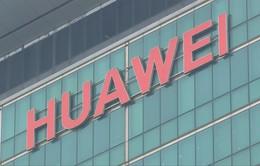 Huawei có thêm 45 ngày kinh doanh với các doanh nghiệp Mỹ