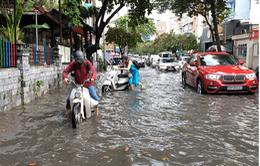 Cảnh báo ngập tại Nam Bộ do mưa và triều cường