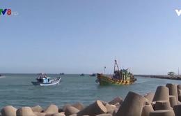 Bất cập hạ tầng cảng cá ở Quảng Ngãi