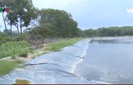 Huế: Nhà máy chế biến tinh bột sắn xả thải ô nhiễm môi trường