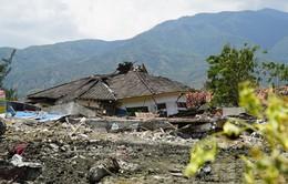1 năm thảm họa động đất, sóng thần tại Indonesia