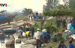 Đà Nẵng: Ra quân làm sạch bãi biển