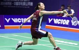 Giải cầu lông Hàn Quốc mở rộng 2019: Tai Tzu-ying bị loại, Kento Momota tiếp tục góp mặt ở chung kết