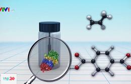 Hạt vi nhựa có thể đe dọa cuộc sống và sức khỏe của con người