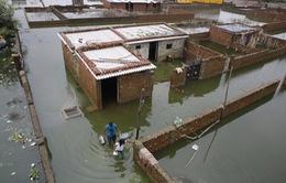 Lũ lụt nghiêm trọng tại Ấn Độ, ít nhất 44 người thiệt mạng
