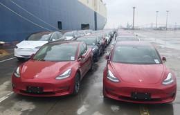 Trung Quốc miễn thuế xe điện Tesla