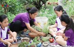 Năm học xanh của học sinh Hà Nội
