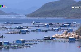 Khánh Hòa: Phá vỡ quy hoạch vùng nuôi thủy sản