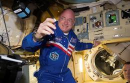 Các phi hành gia đều cao lên sau thời gian ở trạm vũ trụ?