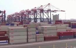 Bắc Kinh kiện Washington lên WTO: Mỹ sẽ phản ứng thế nào?