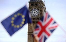 Nước Anh có thể thiệt hại 16 tỷ USD do Brexit không thỏa thuận