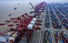 Trung Quốc kiện Mỹ lên WTO nhằm mục đích gì?