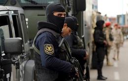 Ai Cập tiêu diệt 6 phần tử khủng bố