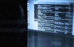 EU triển khai cơ sở dữ liệu tư pháp chống khủng bố