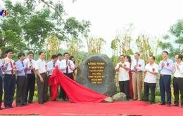 Tu bổ, tôn tạo địa điểm Khu di tích Trường Đảng Trung ương Nguyễn Ái Quốc