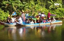 Trải nghiệm du lịch cộng đồng tại đất mũi Cà Mau