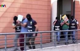 Italy bắt giữ các đối tượng trốn thuế và rửa tiền