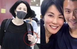 Tạ Đình Phong - Vương Phi bí mật kết hôn?