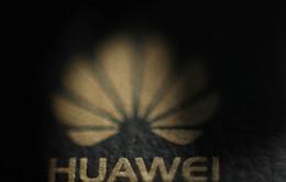 Năm 2020 của Huawei: Sống sót là ưu tiên hàng đầu