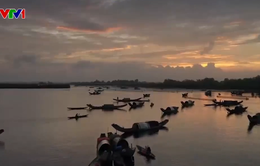 Khám phá Phá Tam Giang - Đầm phá lớn nhất Đông Nam Á