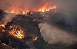 Australia vận động thêm 240.000 người sơ tán vì cháy rừng