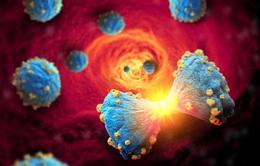 Phát triển hợp chất mới ngăn chặn nhân tố điều khiển sự phát triển của tế bào ung thư