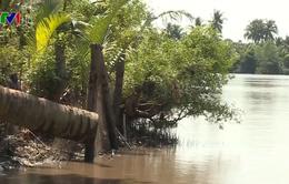 Trữ nước ngọt - Giải pháp cốt lõi ứng phó hạn, mặn ở ĐBSCL
