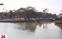 Vĩnh Long: Độ mặn đã chạm ngưỡng lịch sử 10‰