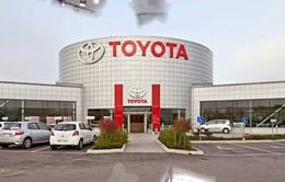 Toyota đặt mục tiêu tăng doanh số bán ô tô tại Hàn Quốc năm 2020